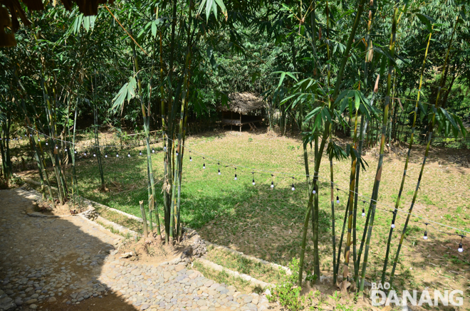 The space surrounding the homestay is close to nature