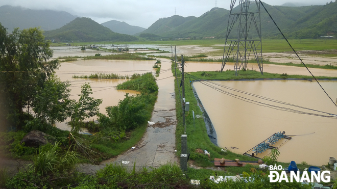 Many shrimp ponds in Truong Dinh Village, Hoa Lien Commune submerged in floodwater