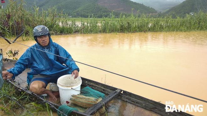 Mr Nguyen Bac Phuong, a shrimp farmer in Truong Dinh Village, complained that 5 quintals of shrimp have been swept out by floodwaters.
